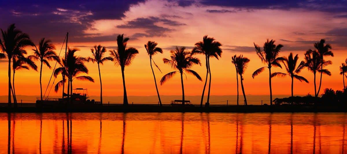 Circle the Hawaiian islands