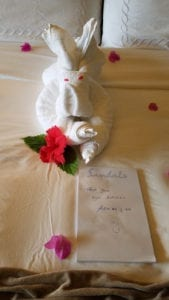 Towel animal from our butlers - Adrian and Ash - Sandals Royal Plantation - Ocho Rios - Jamaica